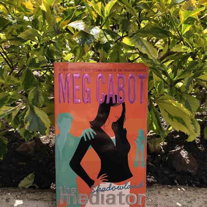The mediator Shadowland